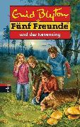 Cover-Bild zu Blyton, Enid: Fünf Freunde und der Hexenring (eBook)