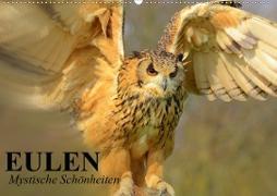 Cover-Bild zu Stanzer, Elisabeth: Eulen. Mystische Schönheiten (Wandkalender 2021 DIN A2 quer)