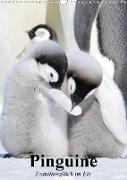 Cover-Bild zu Stanzer, Elisabeth: Pinguine. Familienglück im Eis (Wandkalender 2021 DIN A3 hoch)