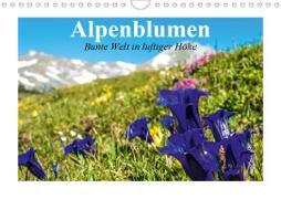 Cover-Bild zu Stanzer, Elisabeth: Alpenblumen. Bunte Welt in luftiger Höhe (Wandkalender 2021 DIN A4 quer)