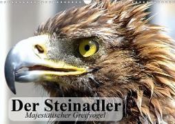 Cover-Bild zu Stanzer, Elisabeth: Der Steinadler. Majestätischer Greifvogel (Wandkalender 2021 DIN A3 quer)