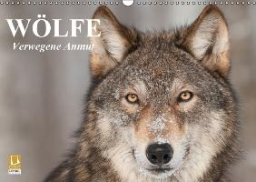 Cover-Bild zu Stanzer, Elisabeth: Wölfe. Verwegene Anmut (Wandkalender immerwährend DIN A3 quer)