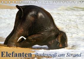 Cover-Bild zu Stanzer, Elisabeth: Elefanten - Badespaß am Strand (Tischkalender immerwährend DIN A5 quer)
