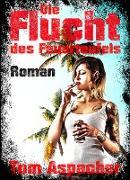 Cover-Bild zu Aspacher, Tom: Die Flucht des Feuerteufels (eBook)