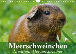 Cover-Bild zu Stanzer, Elisabeth: Meerschweinchen Niedliche Herzensbrecher (Wandkalender 2021 DIN A4 quer)