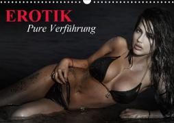 Cover-Bild zu Stanzer, Elisabeth: Erotik - Pure Verführung (Wandkalender 2021 DIN A3 quer)
