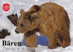 Cover-Bild zu Stanzer, Elisabeth: Bären. Unterwegs mit Meister Petz (Wandkalender 2021 DIN A3 quer)
