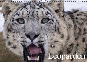 Cover-Bild zu Stanzer, Elisabeth: Leoparden (Wandkalender immerwährend DIN A3 quer)