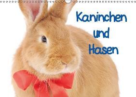 Cover-Bild zu Stanzer, Elisabeth: Kaninchen und Hasen (Wandkalender immerwährend DIN A3 quer)