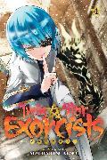 Cover-Bild zu Sukeno, Yoshiaki: Twin Star Exorcists, Vol. 4
