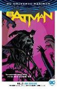 Cover-Bild zu King, Tom: Batman Vol. 2: I Am Suicide (Rebirth)