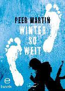 Cover-Bild zu Martin, Peer: Winter so weit (eBook)