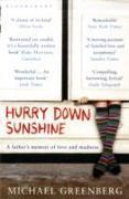 Cover-Bild zu Greenberg, Michael: Hurry Down Sunshine