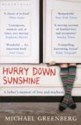 Cover-Bild zu Greenberg, Michael: Hurry Down Sunshine (eBook)