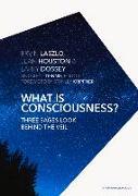 Cover-Bild zu Laszlo Ph. D., Ervin: What Is Consciousness?: Three Sages Look Behind the Veil