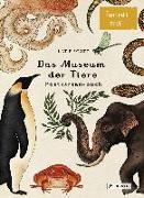 Cover-Bild zu Das Museum der Tiere. Postkartenbuch von Scott, Katie