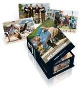 Cover-Bild zu Schwingen - Postkartenbox von Eicher, Rolf (Fotogr.)