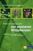 Cover-Bild zu Fleischhauer, Steffen Guido: Kleine Enzyklopädie der essbaren Wildpflanzen
