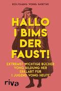 Cover-Bild zu Hallo i bims der Faust