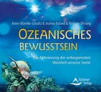 Cover-Bild zu Ozeanisches Bewusstsein von Schultz, Anne-Mareike