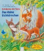 Cover-Bild zu Entdecke die Tiere. Das kleine Eichhörnchen von Reichenstetter, Friederun