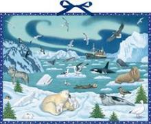 Cover-Bild zu Wand-Adventskalender - Tiere der Arktis von Müller, Thomas (Illustr.)