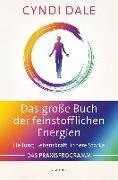 Cover-Bild zu Das große Buch der feinstofflichen Energien von Dale, Cyndi