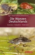 Cover-Bild zu Die Wanzen Deutschlands von Deckert, Jürgen