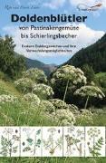Cover-Bild zu Doldenblütler von Pastinakengemüse bis Schierlingsbecher von Lüder, Rita
