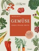 Cover-Bild zu Dove, Hélèna: Gemüse