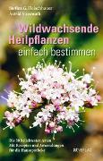 Cover-Bild zu Fleischhauer, Steffen Guido: Wildwachsende Heilpflanzen einfach bestimmen