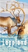 Cover-Bild zu Schaefer, Barbara: Lesereise Lappland (eBook)