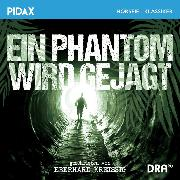 Cover-Bild zu Kreissig, Eberhard: Ein Phantom wird gejagt (Audio Download)