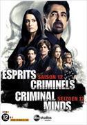 Cover-Bild zu Kershaw, Glenn (Reg.): Esprits Criminels - Saison 12