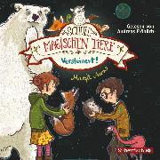 Cover-Bild zu Auer, Margit: Versteinert! (Audio Download)