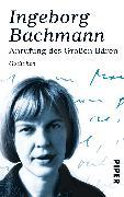 Cover-Bild zu Bachmann, Ingeborg: Anrufung des Großen Bären