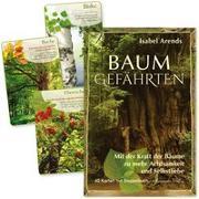 Cover-Bild zu Arends, Isabel: Baumgefährten