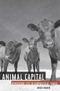 Cover-Bild zu Shukin, Nicole: Animal Capital