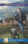 Cover-Bild zu Hansen, Valerie: Explosive Secrets (eBook)