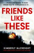 Cover-Bild zu McCreight, Kimberly: Friends Like These (eBook)