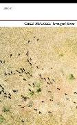 Cover-Bild zu McCully, Chris: Serengeti Songs (eBook)
