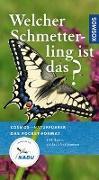 Cover-Bild zu Dreyer, Wolfgang: Welcher Schmetterling ist das?