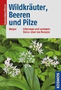 Cover-Bild zu Dreyer, Eva-Maria: Wildkräuter, Beeren und Pilze