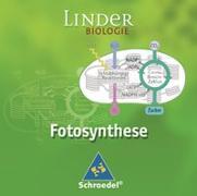 Cover-Bild zu LINDER Biologie SII / Fotosynthese