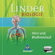 Cover-Bild zu LINDER Biologie SI / Herz und Blutkreislauf