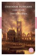 Cover-Bild zu Fontane, Theodor: Grete Minde / Unterm Birnbaum