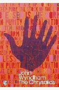 Cover-Bild zu Wyndham, John: The Chrysalids