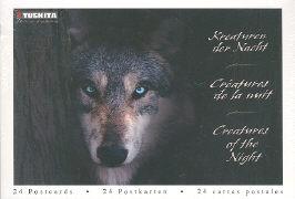 Cover-Bild zu Kreaturen der Nacht