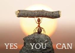 Cover-Bild zu Weisheits-Postkarte 21: YES YOU CAN von Zintenz