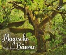 Cover-Bild zu Magische Bäume 2021
